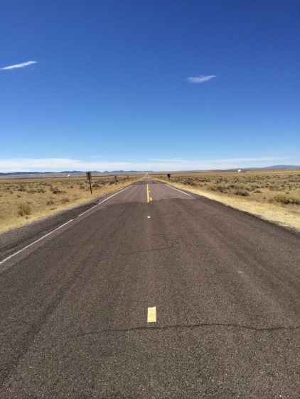 NM 52 leads to the VLA visitors center and is straddled by the east arm