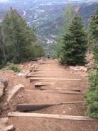 Where did the trail go?