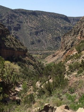 Rio Grande in the distance
