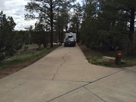 My site with the world's longest driveway