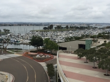 Marina from the convention center