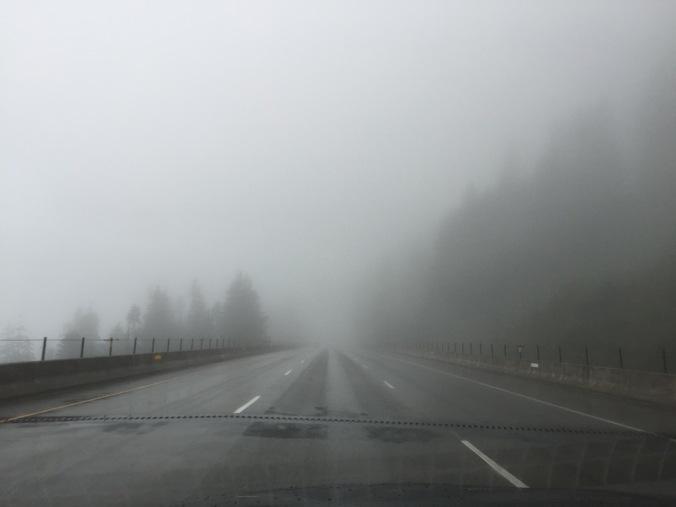 Welcome to western Washington!