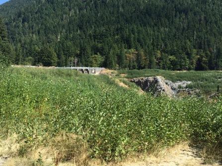 Dam overlook from backside