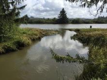 Canoe landing area