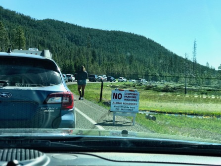 Traffic in Yellowstone? Say it isn't so!