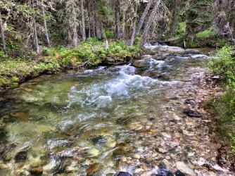 Targhee Creek