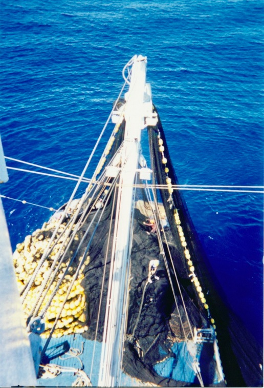 Net being stacked on the aft of the Auro, as viewed from the crow's nest