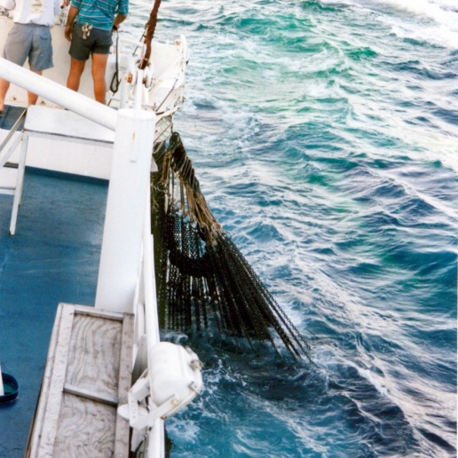 The bottom (or purse strings) of the net all closed up so that the fish cannot escape out of the net (which is still out)