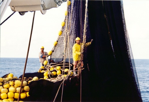 Stacking the net as it is brought back in