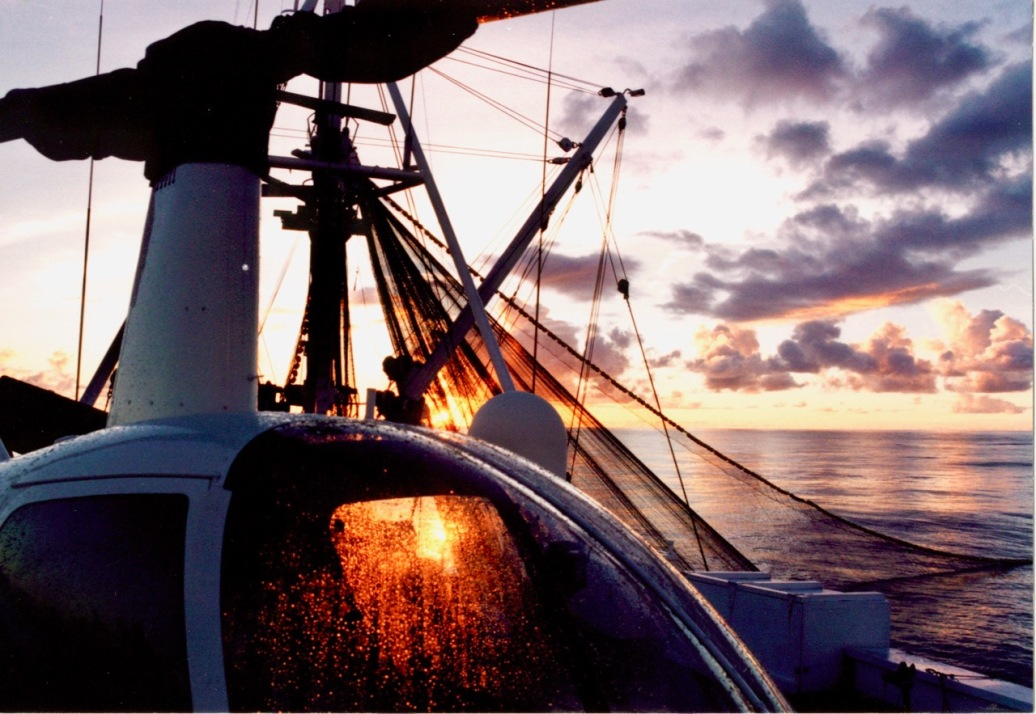 Sampling of the sunsets seen at sea