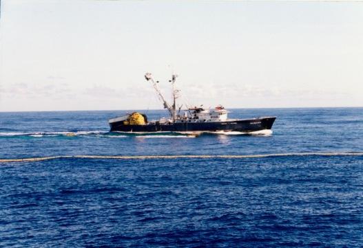 taimane fishing